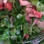 Salades om van te smullen