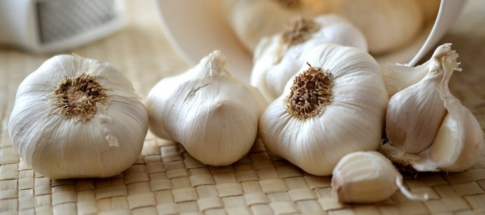 garlic-545223_1280