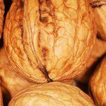 10 feiten over vet