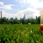 10 gezonde New York inspired smoothies