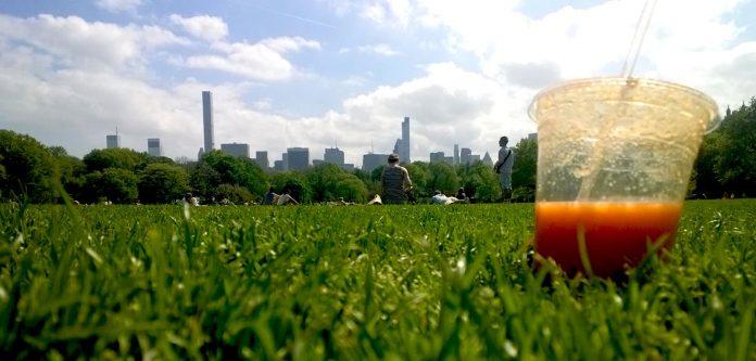 Oké, het park en het uitzicht moet je erbij verzinnen. Maar die smoothie wordt werkelijkheid!