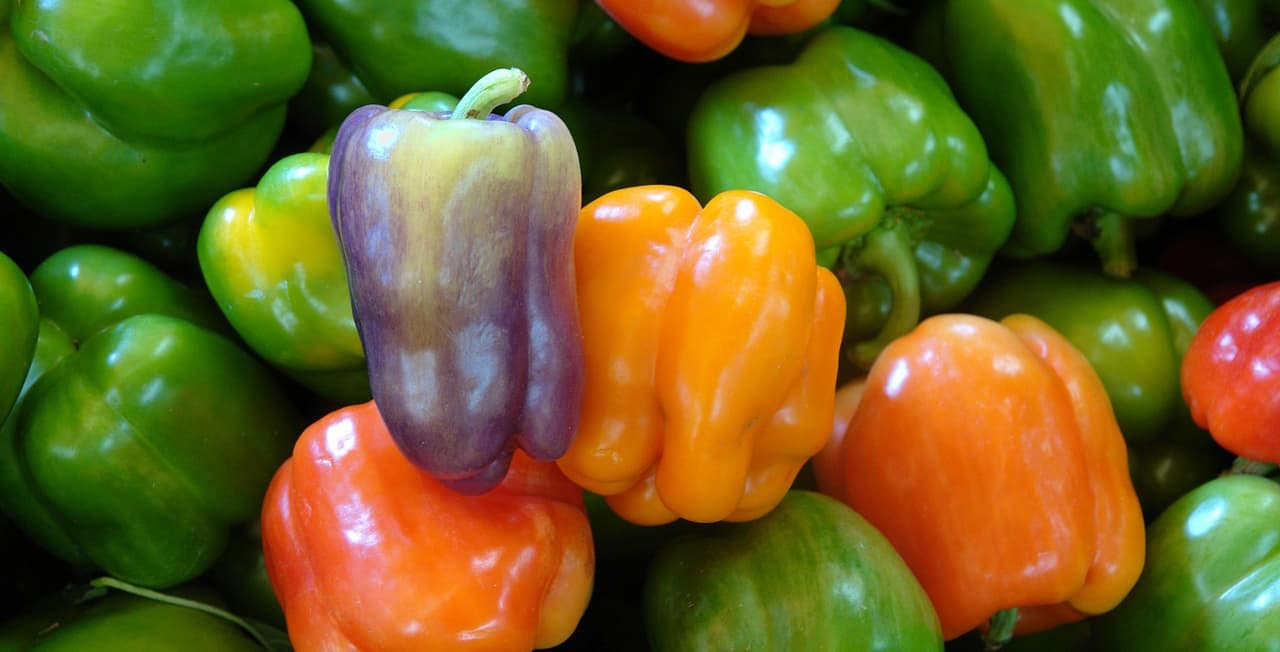 peppers-662505_1280