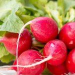 9 gezondheidsvoordelen van radijsjes
